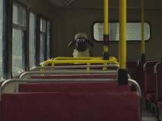 shaun bus