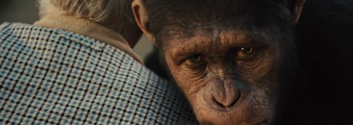 cesar expression planete des singes origines