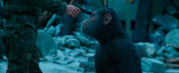 cesar pistolet planete des singes suprematie