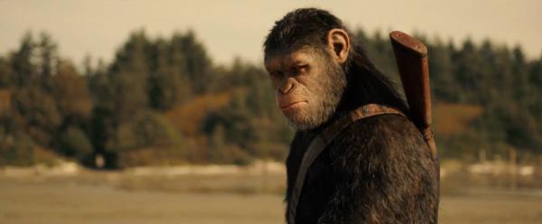 cesar planete des singes suprematie