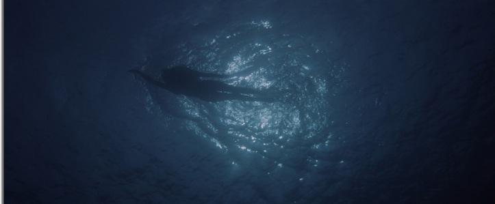 les dents de la mer jaws fille eau nage