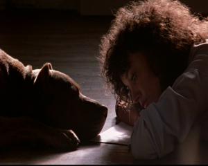 flashdance alex et son chien platon