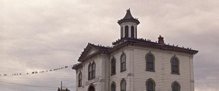 les oiseaux cette école est desormais NOTRE ecole