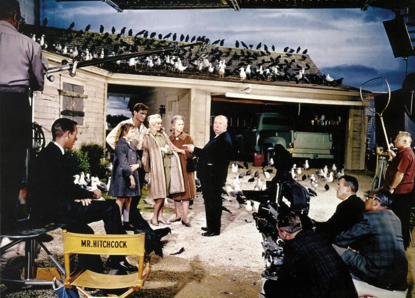 les oiseaux photo de tournage