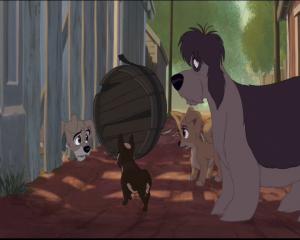 la belle et le clochard 2 scamp coincé dans la barriere de sa maison et voulant se joindre à une bande de chiens errants