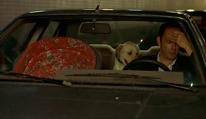 Didier jean pierre dans les bouchons avec son chien