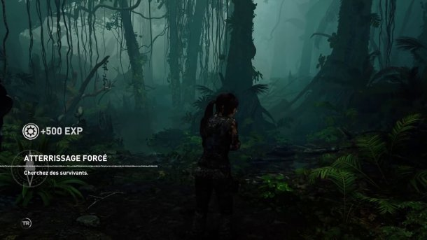shadow of the tomb raider lara debarque dans la jungle apres le crash de son avion
