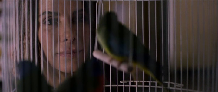 bird box malorie devant une cage à oiseaux