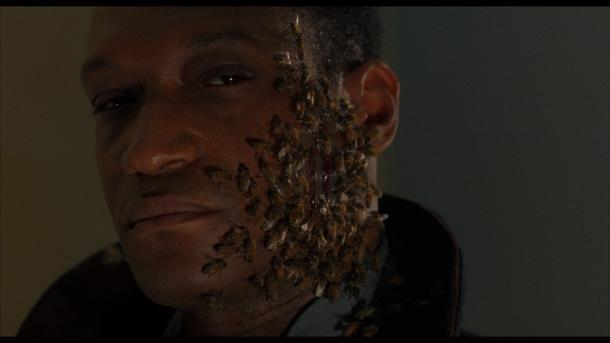 candyman 2 candyman et son visage infesté d'abeilles