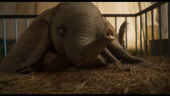 Dumbo 2019 tim burton dumbo allongé sur du foin soufflant sur une plume