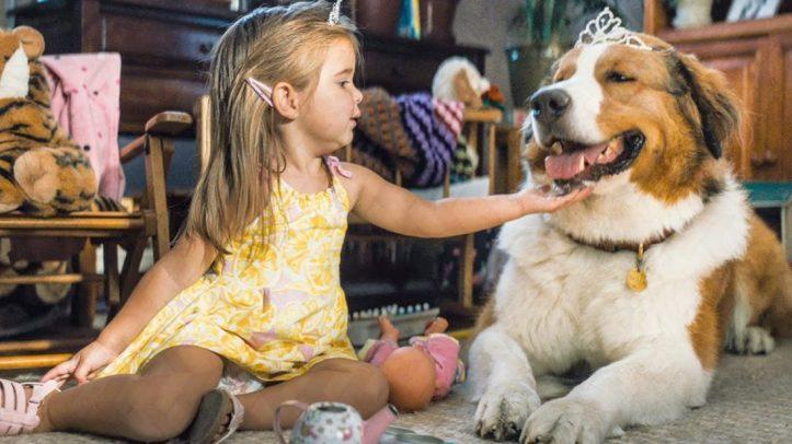 Mes autres vies de chien 2019 Bailey portant sur la tête un diademe et étant couché à coté de C.J encore enfant