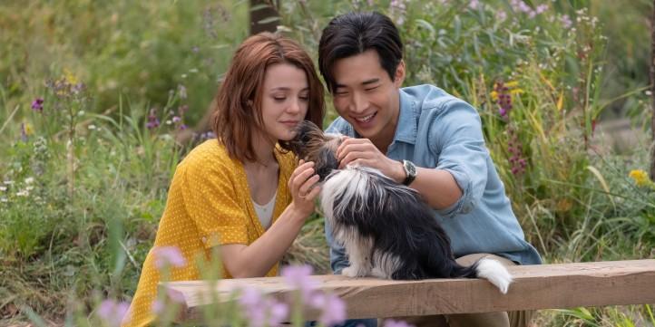 Mes autres vies de chien Trent et C.J caressant Max anciennement Molly puis Bailey