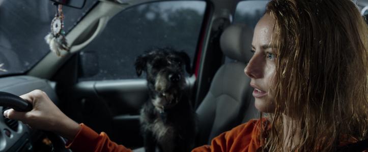 Crawl 2019 Haley au volant de sa voiture accompagnée par Sugar son chien