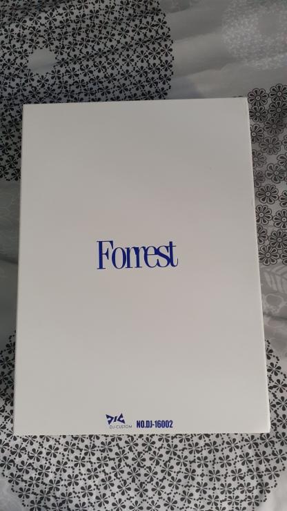 Forrest-Gump-dj-custom-boiteèsansfourreau