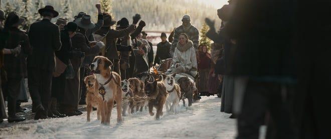 L'appel de la forêt Buck le nouveau de la meute de chien de traineau revient de voyage aux cotés de ses nouveaux maitres