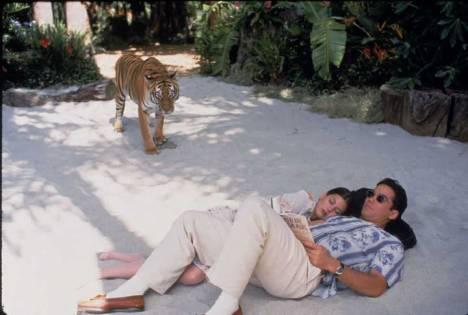 lois-et-clark-les-nouvelles-aventures-de-superman-clark-et-lois-se-reposent-sur-le-sable-pendant-qu'un-tigre-s'approche-d'eux